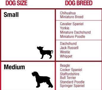Bro Bowl Size Chart